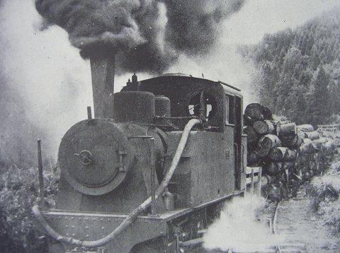 協三工業製蒸気機関車による運材